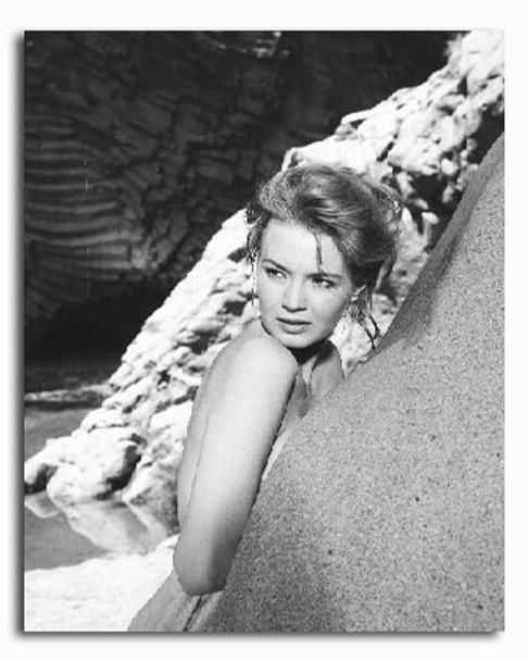 (SS2232906) Angie Dickinson Movie Photo
