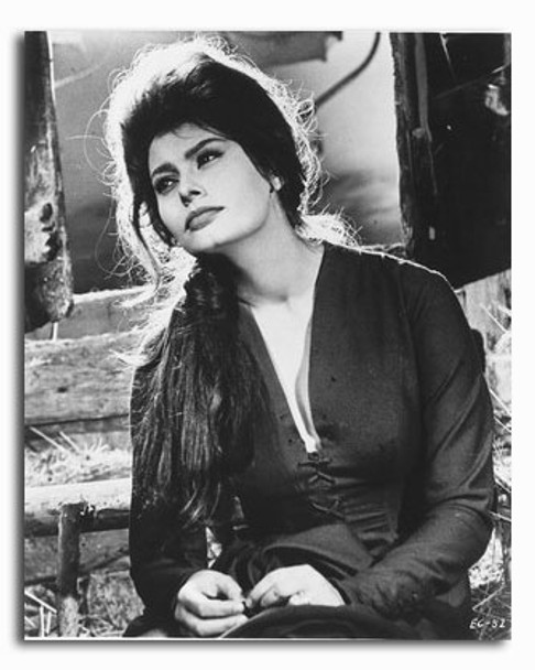 (SS2281110) Sophia Loren Movie Photo