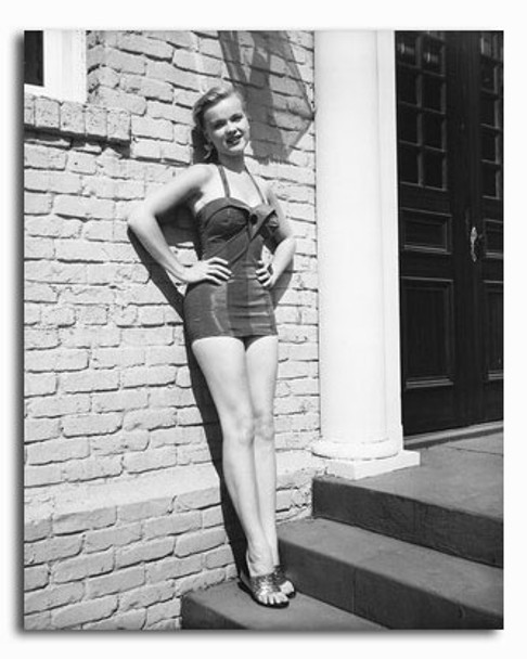 (SS2317250) Anne Francis Movie Photo