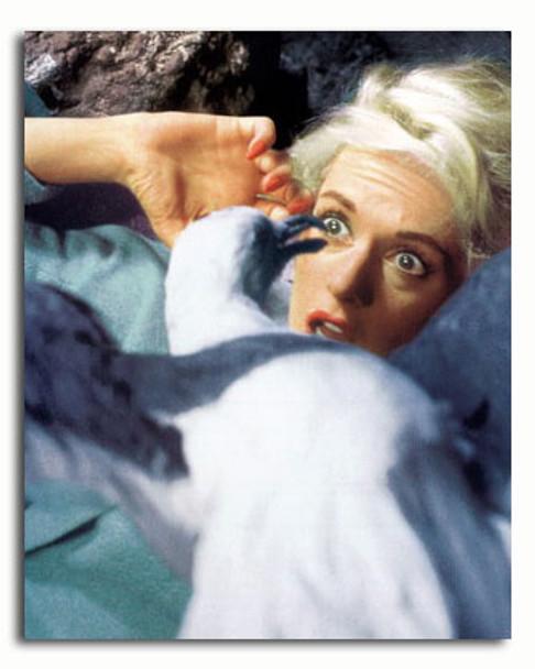 (SS3445182) Tippi Hedren Movie Photo