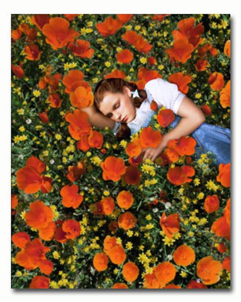 (SS3457961) Judy Garland Movie Photo