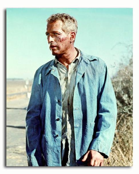 (SS3558308) Paul Newman Movie Photo