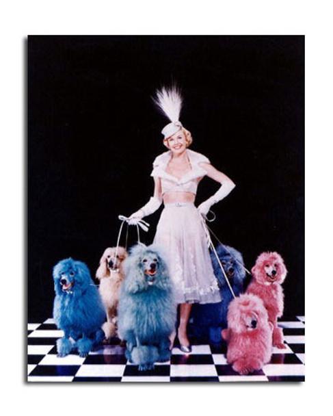 Doris Day Movie Photo (SS3614117)