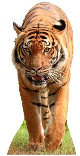 Tiger Cutout