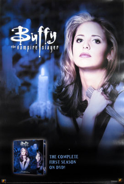 BUFFY THE VAMPIRE SLAYER (Single Sided Video) ORIGINAL VIDEO/DVD AD POSTER
