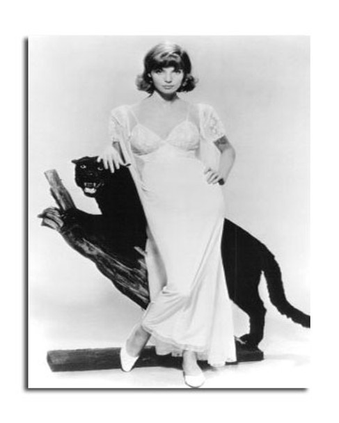 Elsa Martinelli Movie Photo (SS2471300)