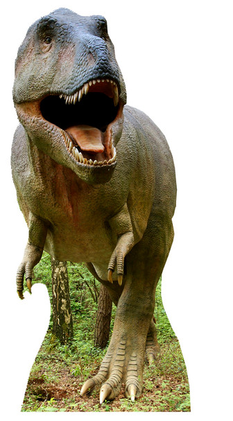 Tyrannosaurus Rex - Lifesize Cardboard Cutout / Standee