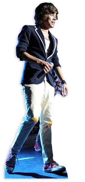 Harry Styles Cutout