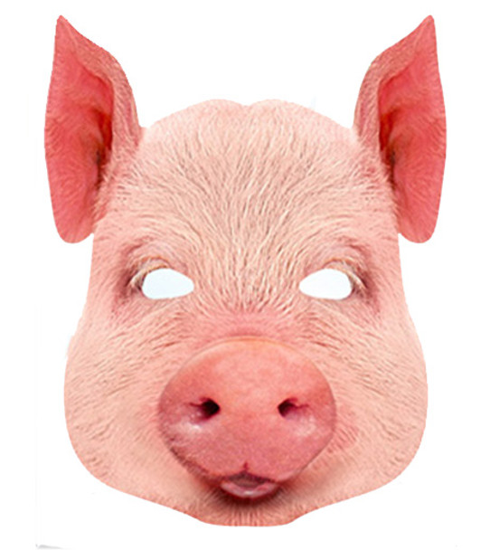 Pig Animal Card Party Face Mask
