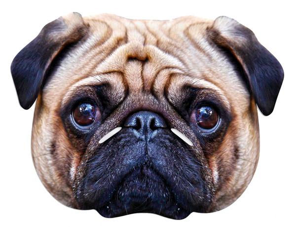 Pug Dog Single Card Party Face Mask