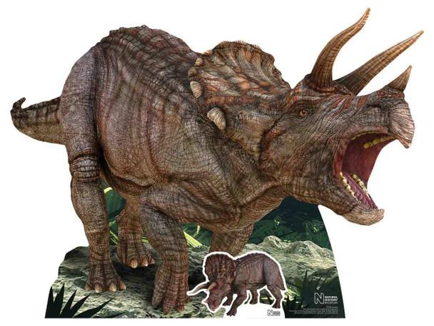 Triceratops Dinosaur Natural History Museum Cardboard Cutout