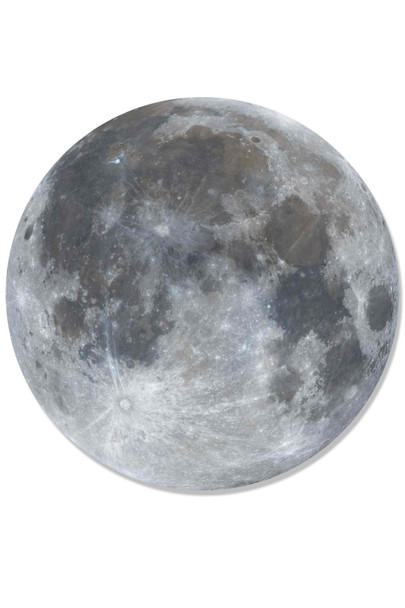 Full Moon Wall Mounted 3D Effect Cardboard Cutout