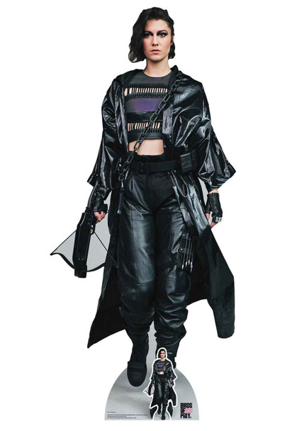 Huntress Helena Bertinelli Birds of Prey Lifesize Cardboard Cutout