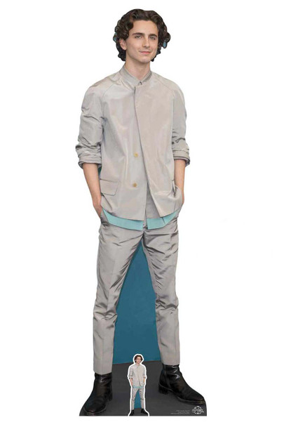 Timothee Chalamet Grey Outfit Lifesize Cardboard Cutout