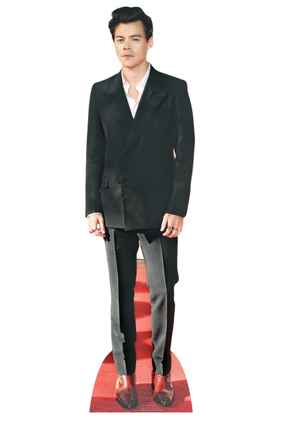 Harry Styles Red Shoes Mini Cardboard Cutout / Standee