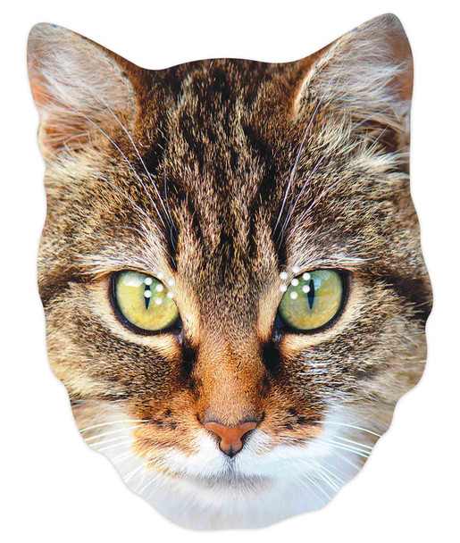 Cat 2D Animal Single Card Party Mask