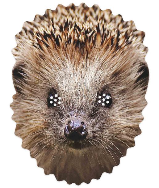 Hedgehog 2D Animal Single Card Party Mask