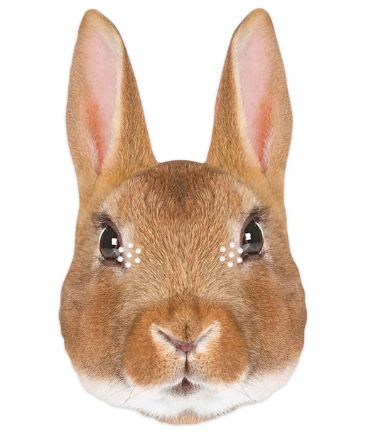Rabbit 2D Animal Single Card Party Mask