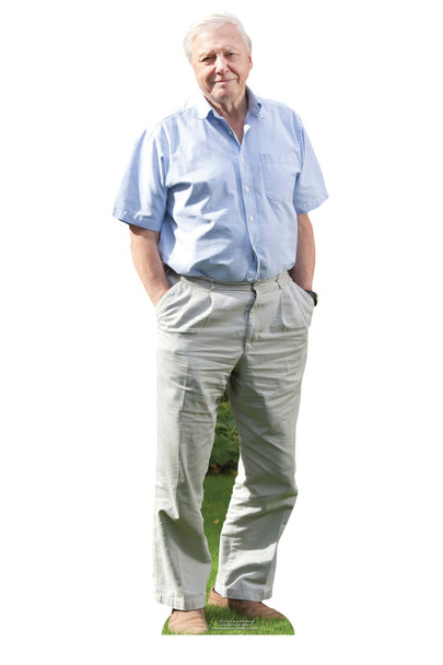 Sir David Attenborough Celebrity Mini Cardboard Cutout