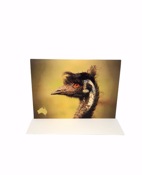 Tansy McAleer - Greeting Cards - Australian Animals