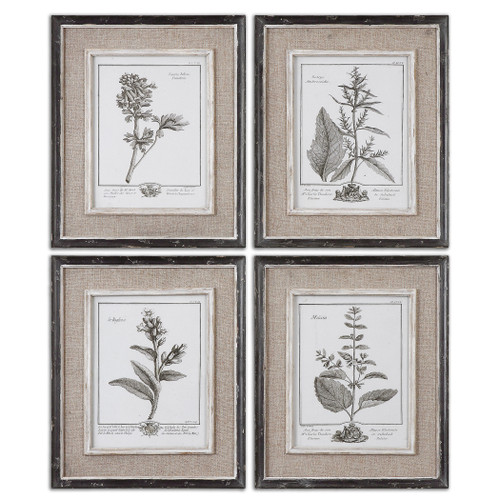 Uttermost Casual Grey Study Framed Art Set/4 by Grace Feyock
