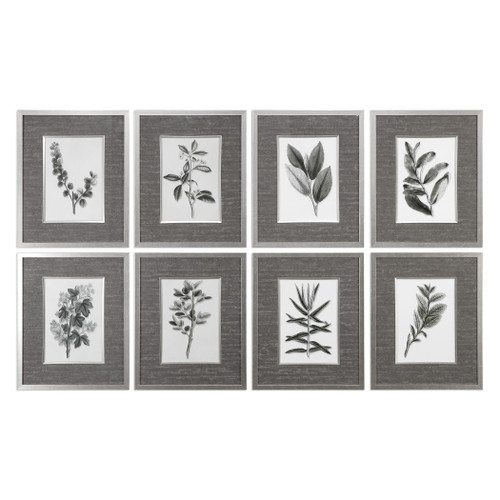 Uttermost Sepia Gray Leaves Prints S/8 by Grace Feyock