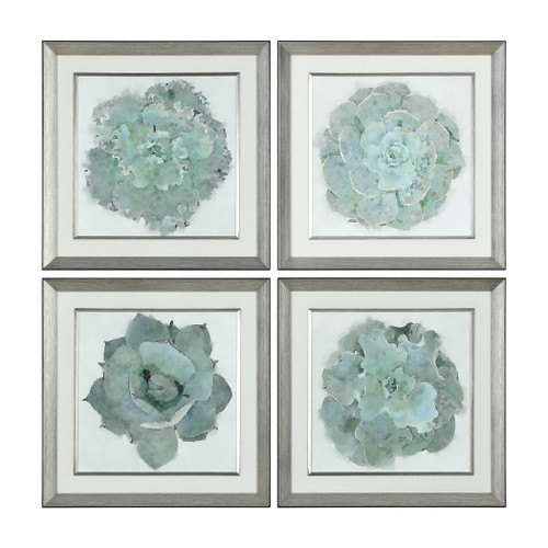 Uttermost Natural Beauties Botanical Prints S/4 by Grace Feyock