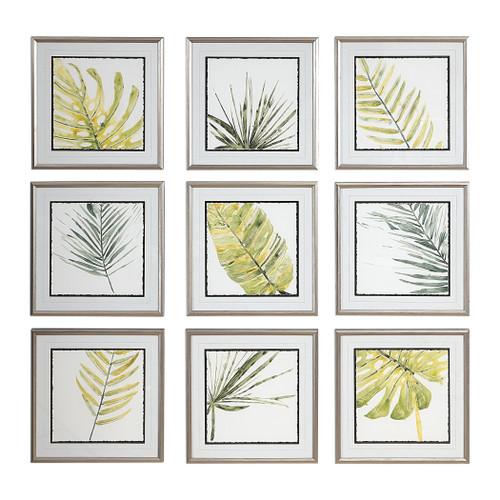 Uttermost Verdant Impressions Leaf Prints, S/9