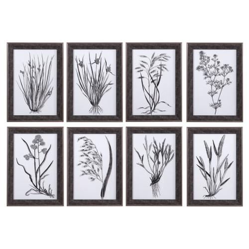 Uttermost Classic Botany Framed Prints, Set/8 by Grace Feyock