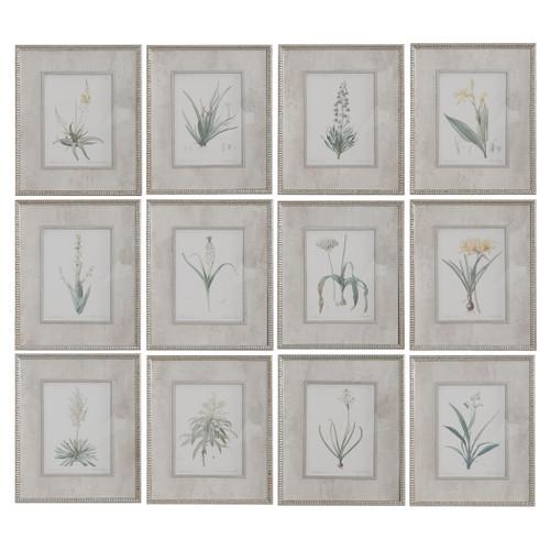 Uttermost Spring Florals Framed Prints, Set/12