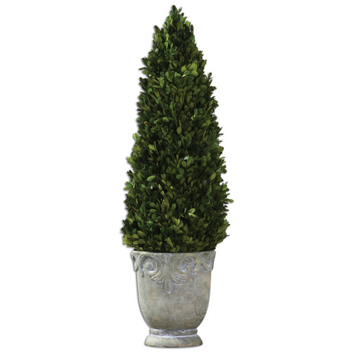 Uttermost Boxwood Cone Topiary by Constance Lael-Linyard