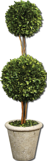 Uttermost Two Sphere Topiary Preserved Boxwood by Constance Lael-Linyard