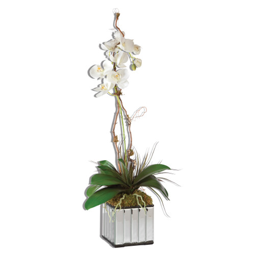 Uttermost White Kaleama Orchids by Constance Lael-Linyard