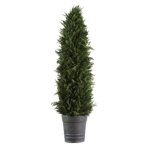 Uttermost Cypress Cone Topiary by Constance Lael-Linyard