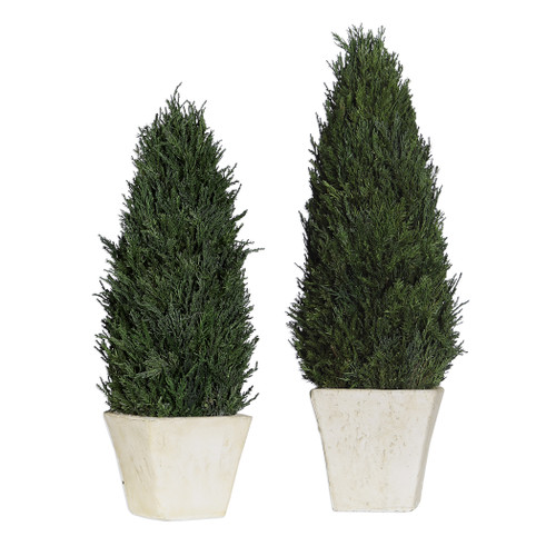 Uttermost Cypress Cone Topiaries, S/2 by Constance Lael-Linyard