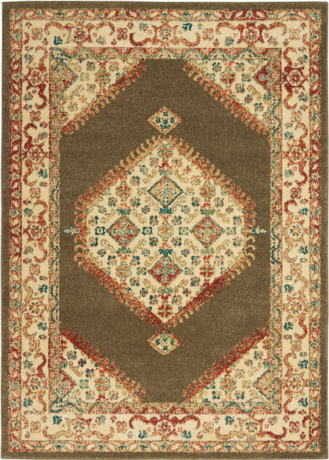 Nourison Traditional Antique Persian Area Rug - NOR-TRQ03-Brown