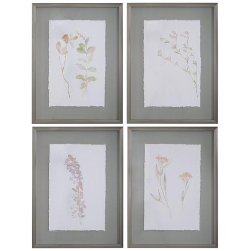 Uttermost Flourish Framed Botanical Prints S/4
