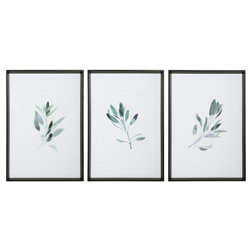 Uttermost Simple Sage Watercolor Prints, S/3
