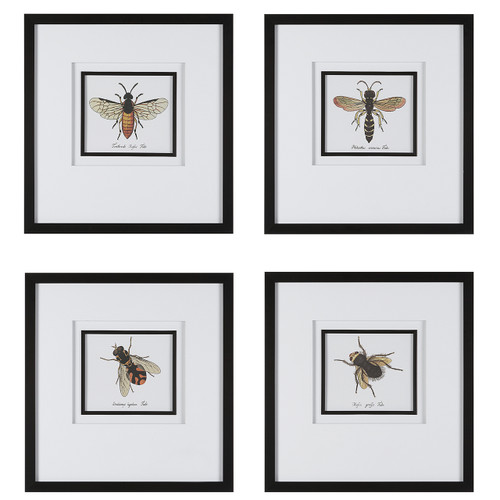 Uttermost Anthophila Framed Prints, S/4