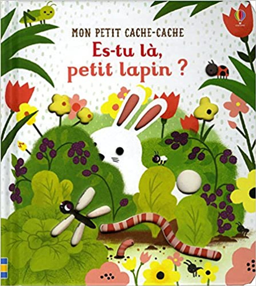Es-tu la petit lapin? (Mon petit Cache-Cache) Author: Sam Taplin, Emily Dove,Véronique Duran(Translator) Published by: Usborne France (2018) ISBN-13:  9781474945806 Section: French children's Books