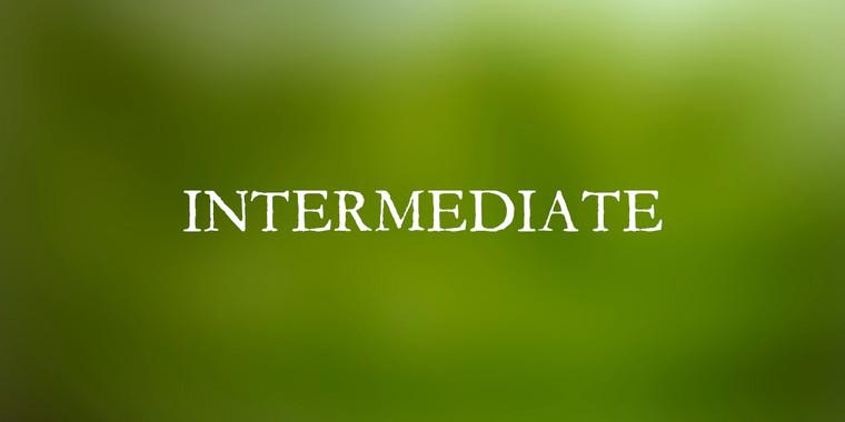 Intermediate Wellness Plan