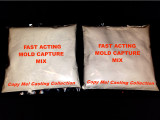 Fast Acting Mold Capture Mix - 2 Bag Refill