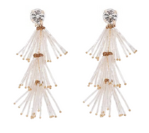 Chandelier Beaded Fringe Earring