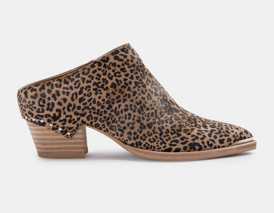 Lindsey, Dusted Leopard