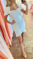 Eyelet Fitted Mini Dress