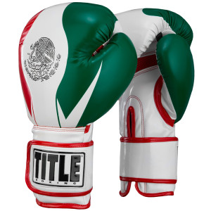 Title Boxing Infused Foam El Combate Mexico Hook and Loop Training Gloves