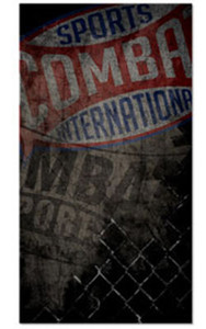 Combat Sports Standard Banner