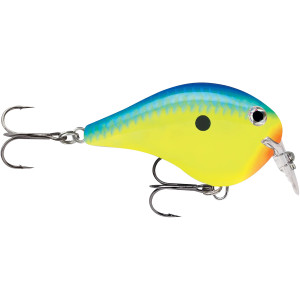 Rapala DT Fat 01 Fishing Lure - Parrot