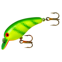 Lures & Baits
