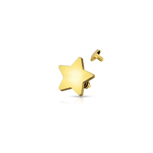 Dermal Top 14ga Internally Threaded 14 Karat Solid Yellow Gold 4mm Star